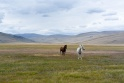 Traveling the Ukok Plateau